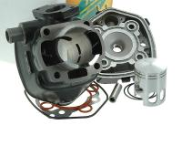 cylinder kit Top Performances Trophy 50cc for Minarelli horizontal LC