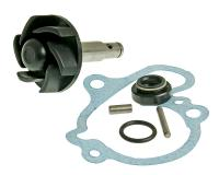water pump repair kit for Minarelli AM