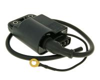CDI unit with ignition coil for Gilera, Piaggio w/o catalytic converter