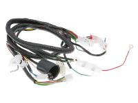 main wire / general wire harness for Jinlun Fighter 50