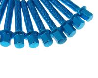 engine case / variator cover screw set New Style blue for Minarelli
