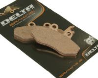 brake pads Delta Braking sintered DB2029SR for Rieju RS-2 50 AM6