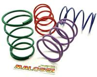 torque spring Malossi MHR - different categories