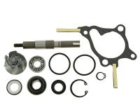 water pump repair kit for Honda, Piaggio, Peugeot 250cc
